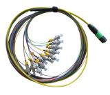 MPO/APC to 12 FC 900um Breakout Fiber Cable