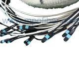 MPO Multi Trunk Cable Assembly