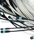 Armored MPO Multi Trunk Cable Assembly